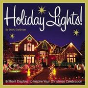 Cover of: Holiday Lights! | David Seidman