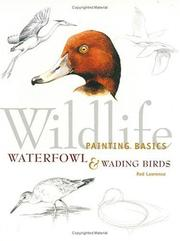Cover of: Wildlife Painting Basics Waterfowl & Wading Birds (Wildlife Painting Basics)