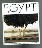 Cover of: Egypt | Dorothy Bohm