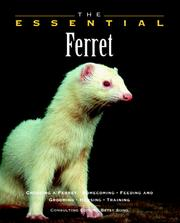 Cover of: The Essential Ferret (Essential (Howell)) | Betsy Sikora Siino