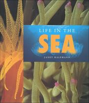 Cover of: Life in the Sea (Halfmann, Janet. Lifeviews.) (Halfmann, Janet. Lifeviews.)