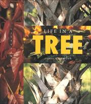 Cover of: Life in a Tree (Halfmann, Janet. Lifeviews.) (Halfmann, Janet. Lifeviews.)