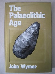 Cover of: The Palaeolithic Age