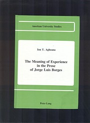 Cover of: The meaning of experience in the prose of Jorge Luis Borges