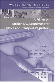 Cover of: A primer on efficiency measurement for utilities and transport regulators