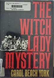 Cover of: The witch lady mystery | Carol Beach York