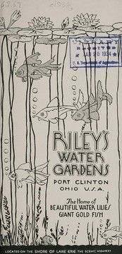 Cover of: Riley