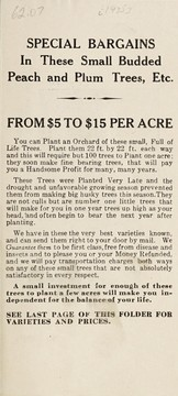 Cover of: Special bargains in these small budded peach and plum trees, etc | Benton County Nursery Co