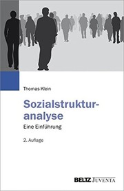 Cover of: Sozialstrukturanalyse