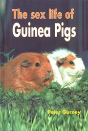Cover of: The Sex Life of Guinea Pigs