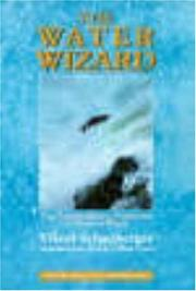 Cover of: The Water Wizard