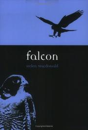 Cover of: Falcon (Reaktion Books - Animal)