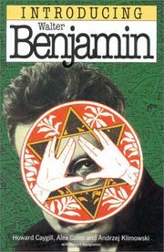 Cover of: Walter Benjamin for beginners
