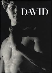 Cover of: Michelangelo's David
