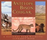 Cover of: Antelope, Bison, Cougar