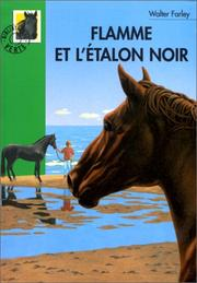 Cover of: Flamme et l'étalon noir