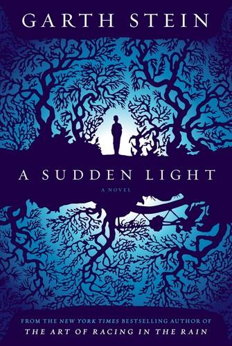 A Sudden Light: A Novel