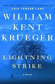 Lightning strike / by Krueger, William Kent,