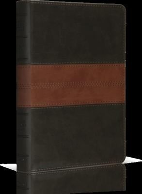 Holy Bible - ESV Personal Size, Forest/Tan