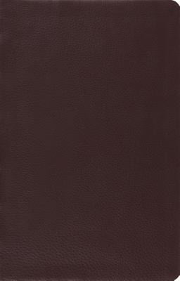 ESV Large Print Brown Leather Thinline Reference Bible