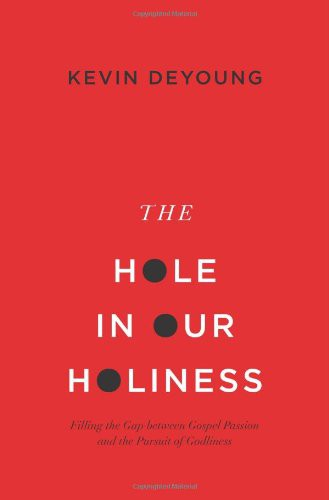 Hole in Our Holiness (paperback) by DeYoung, Kevin