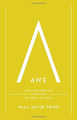 Awe: Why It Matters for Everything We Think, Say, and Do by Tripp, Paul David