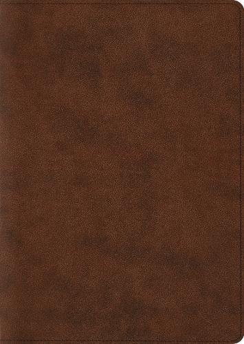ESV Holy Bible Archaeology Study TT Brown