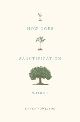 How Does Sanctification Work? by Powlison, David