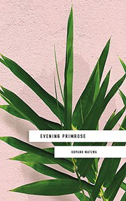 Evening Primrose: a heart-wrenching novel for ou, Matlwa, Kopano, New