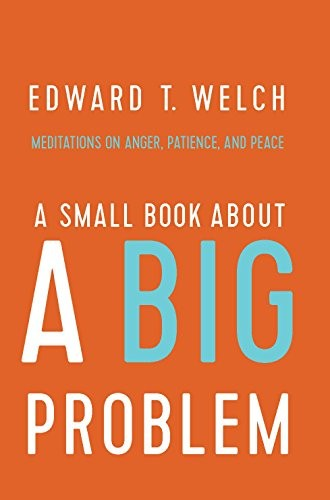 Small Book About a Big Problem by Welch, Ed