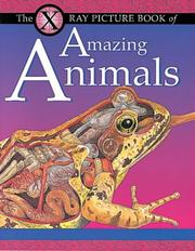 Cover of: X Ray Picture Book of Amazing Animals (X Ray)