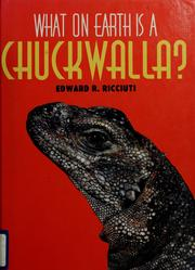 Cover of: What on earth is a chuckwalla