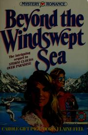 Cover of: Beyond the Windswept Sea (Mystery Romance Series, Vol 4)