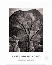Cover of: Autumn Tree Against Cathedral Rocks, Yosemite 1944