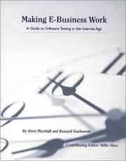 Cover of: Making E-Business Work: A Guide to Software Testing in the Internet Age