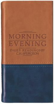 Cover of: Morning and Evening - Matt Tan/Blue