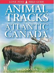 Cover of: Animal Tracks of Atlantic Canada