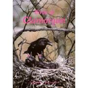 Cover of: Birds of Glamorgan