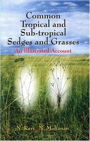 Cover of: Common Tropical and Sub-Tropical Sedges and Grasses
