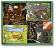 Cover of: Smithsonian's Backyard: Fawn at Woodland Way/Gray Squirrel at Pacific Avenue