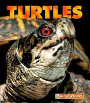 Cover of: Turtles