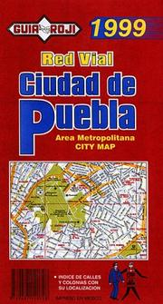 Cover of: Ciudad de Puebla (City Plan)