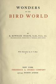 Cover of: Wonders of the bird world