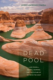 Cover of: Dead pool