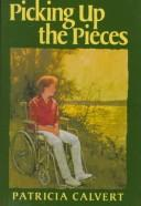 Cover of: Picking Up the Pieces