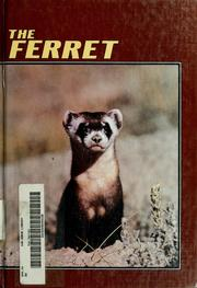Cover of: The ferret