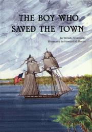 Cover of: The boy who saved the town
