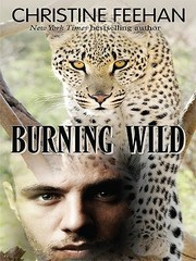 Cover of: Burning Wild