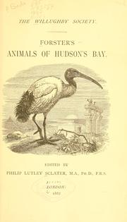 Cover of: Forster's animals of Hudson's Bay
