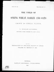Cover of: The yield of spring wheat, barley and oats grown as single plants